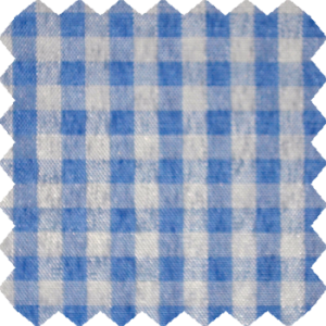baby_blue_gingham